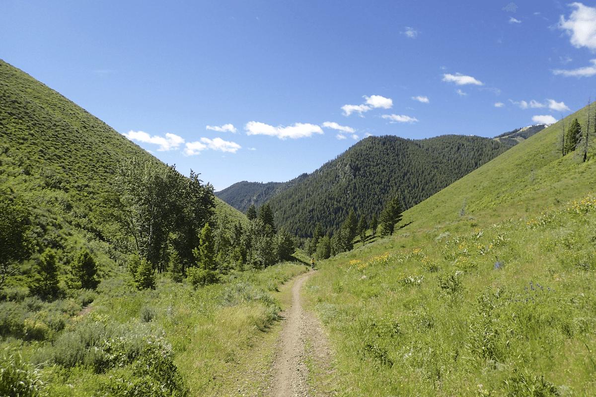 Mountain biking trail in the mountains with clear skies near Sun Valley, Idaho