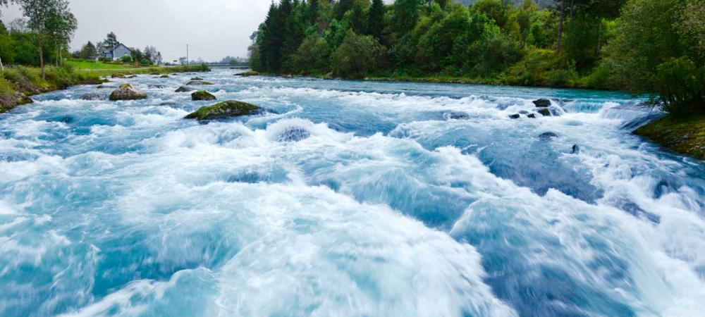 Middle Fork Salmon River Outfitters