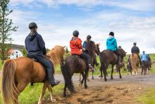 Horse Riding in Stanley Idaho